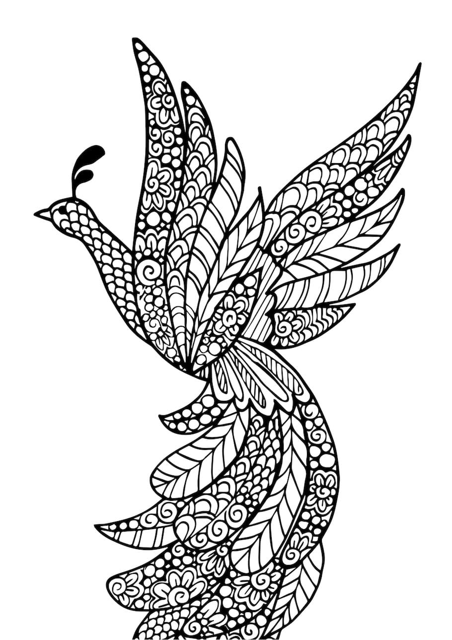 beautiful bird doodle 2 1 - Beautiful Bird Doodle (2)