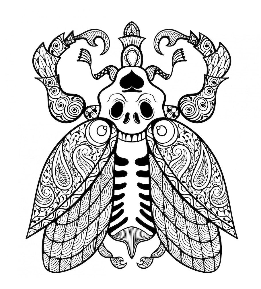 beetle doodle - Beetle Doodle