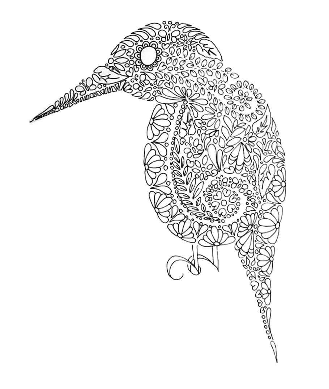 bird doodle - Bird Doodle