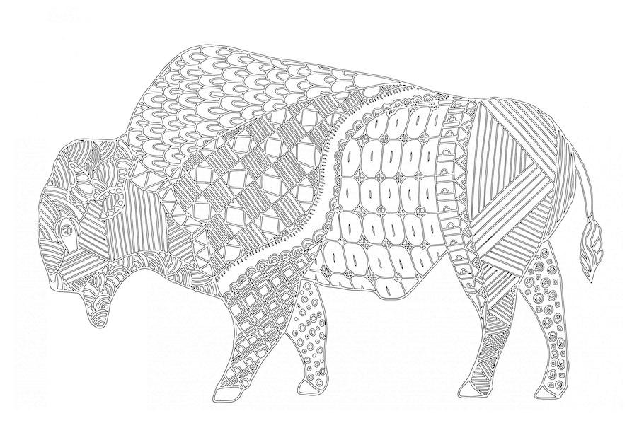 bison doodle - Bison Doodle