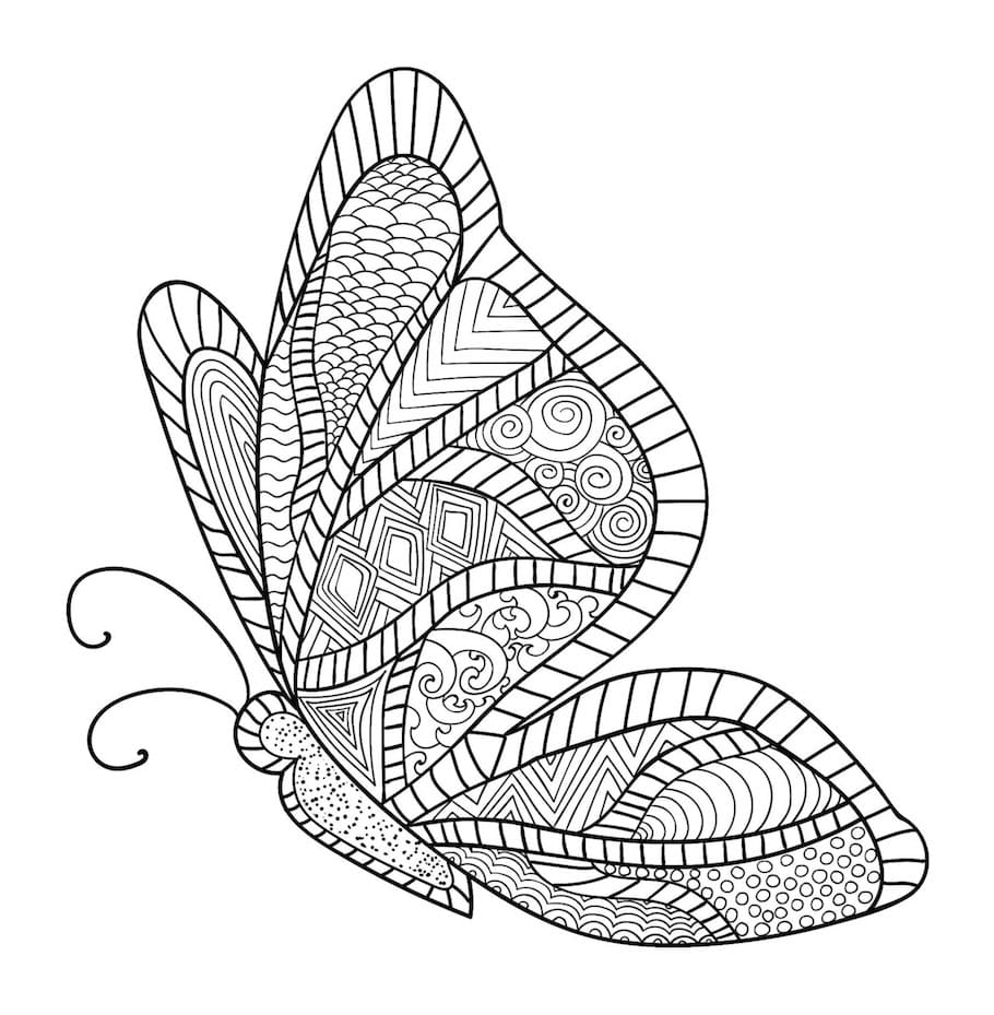 butterfly doodle 6 - Butterfly Doodle (6)