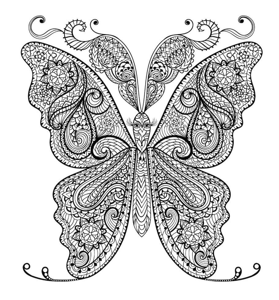 butterfly doodle 8 - Butterfly Doodle (8)