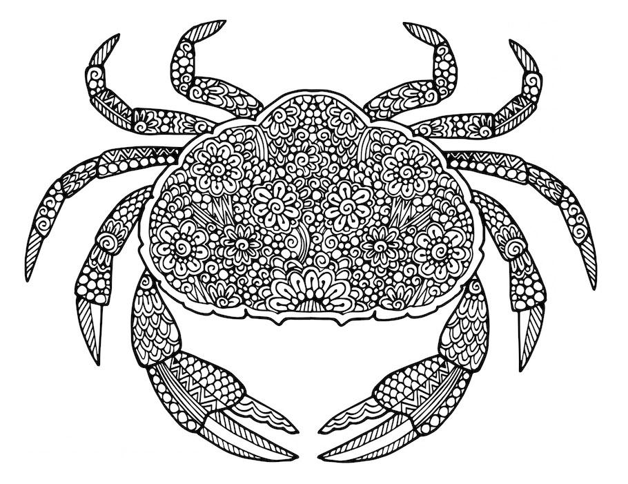 crab doodle - Crab Doodle