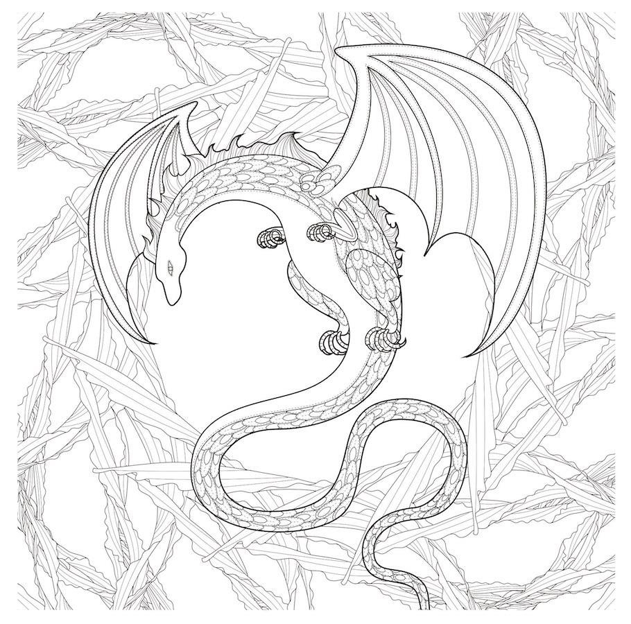 dragon doodle - Dragon Doodle