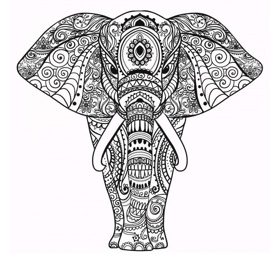 elephant doodle 2 - Elephant Doodle (2)