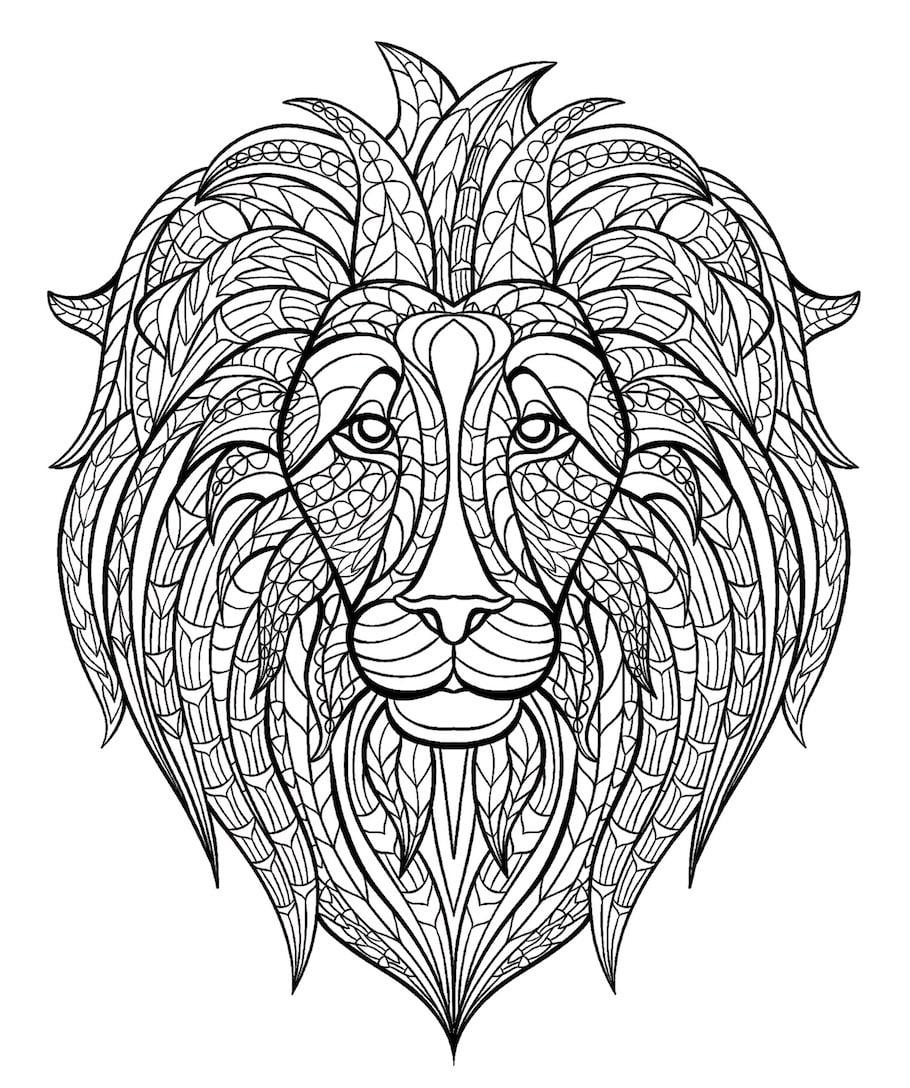lion head doodle 1 - Lion Head Doodle (1)
