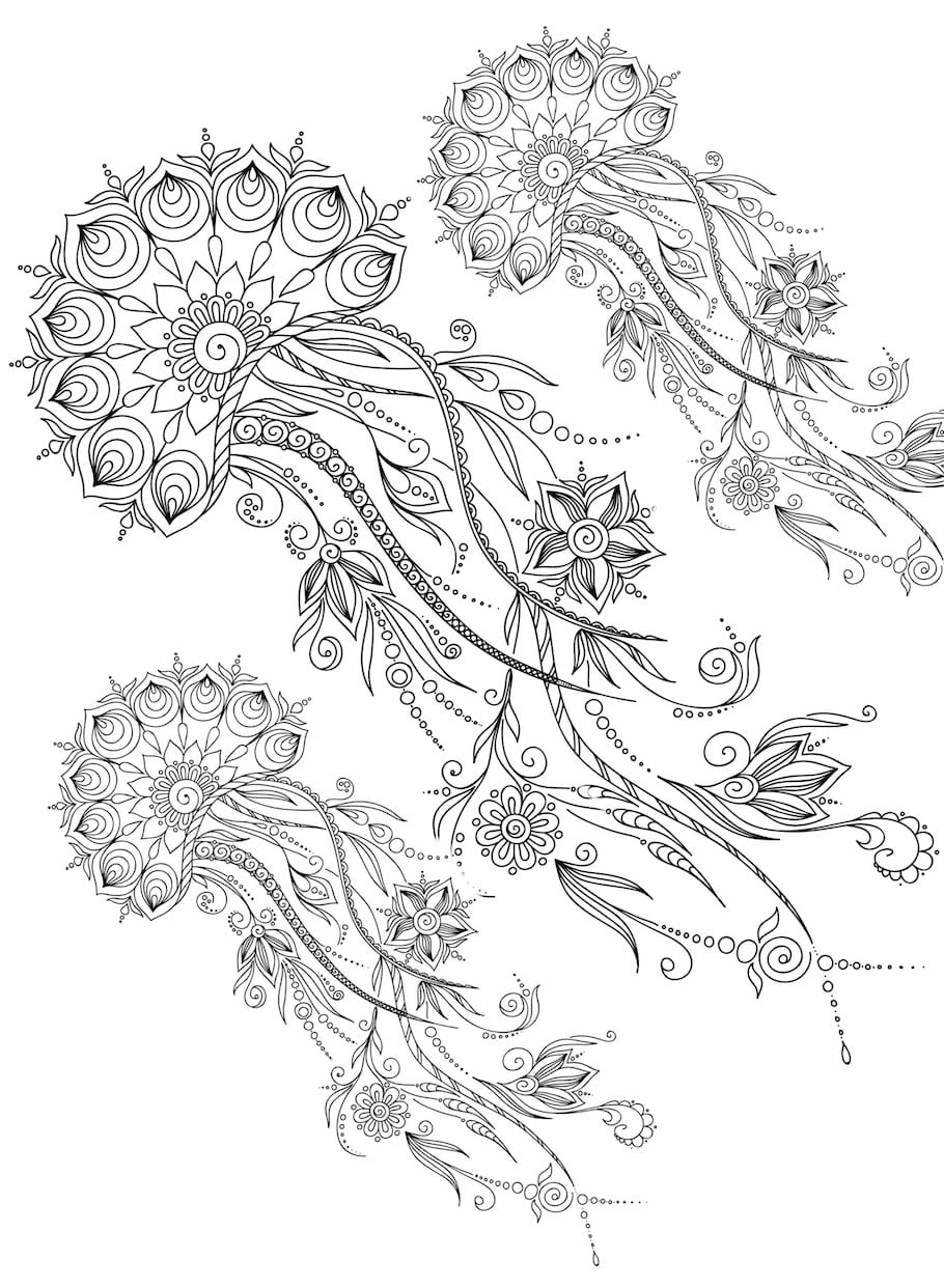 Flower Doodles Doodle Coloring Pages
