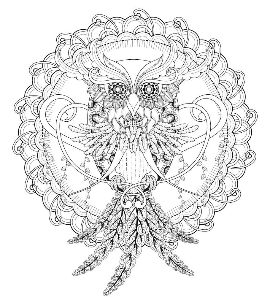owl totem doodle - Owl Totem Doodle