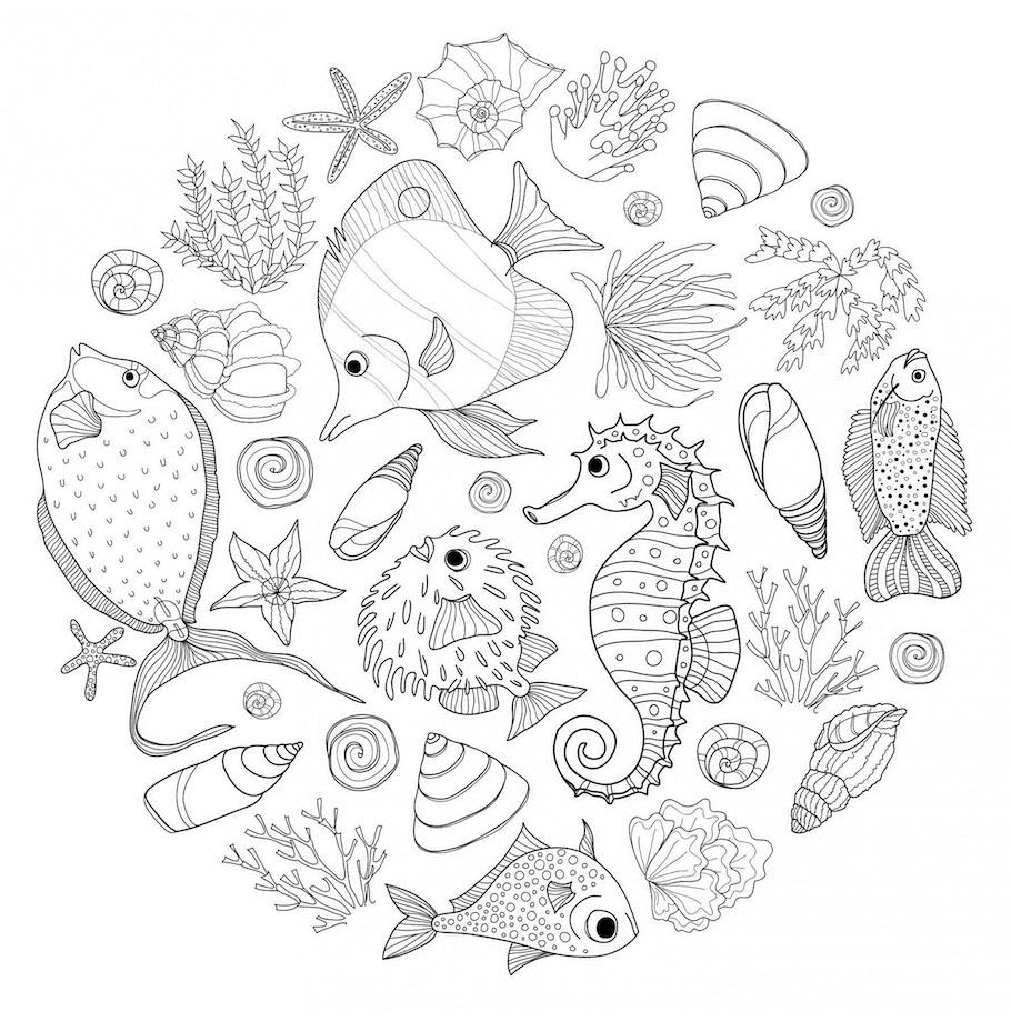 sea animals doodle - Sea Animals Doodle